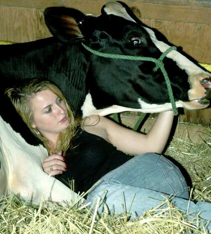 Alissa Parmalee, 18, of Bethlehem snuggles next to her cow, Carter, during a break in the livestock competition at the Aug. 20-22, 2010 Bridgewater Country Fair.  Photo by Alyson Hickey Photo: Alyson Hickey