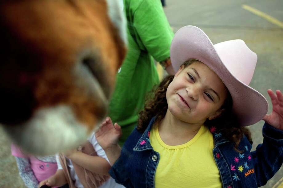London Barrientos, 5, a Garden Oaks Elementary School student tries to get the attention of a horse in a parking lot on Shepherd near 43rd St. as The Spanish Trail Ride group made a stop on their way to Memorial Park to kick off the Houston Livestock Show and Rodeo Friday, Feb. 22, 2013, in Houston. Photo: Johnny Hanson, Houston Chronicle / © 2013  Houston Chronicle