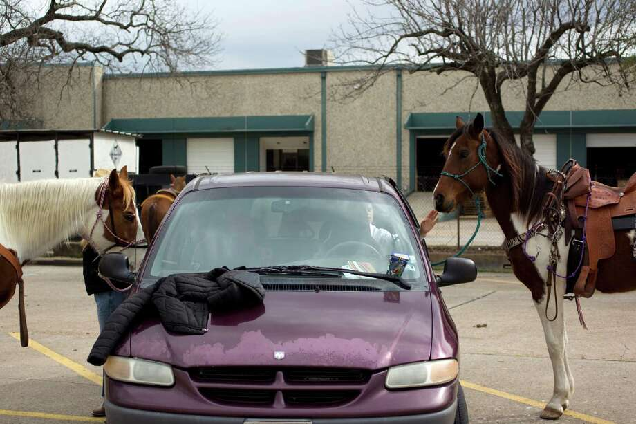 Two horses are tied up to their owners vehicle as The Spanish Trail Ride group prepared to make their way from a parking lot on Shepherd near 43rd to Memorial Park to kick off the Houston Livestock Show and Rodeo Friday, Feb. 22, 2013, in Houston. Photo: Johnny Hanson, Houston Chronicle / © 2013  Houston Chronicle