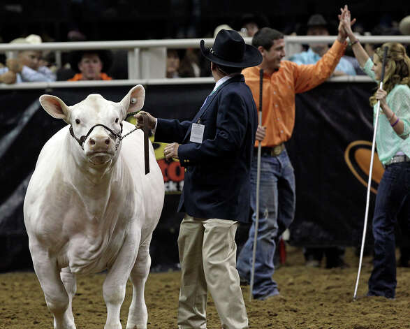 Jonathan Mcanulty takes a high five as his grand champion steer Eminem is ushered to the front after being chosen during the San Antonio Stock Show and Rodeo performance at the AT&T Center Friday night, February 22, 2013. Photo: TOM REEL