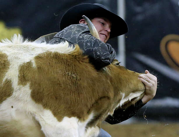 Wyatt Smith takes down a steer in 4.9 seconds during rodeo action at the AT&T Center on Friday, February 22, 2013. Photo: TOM REEL