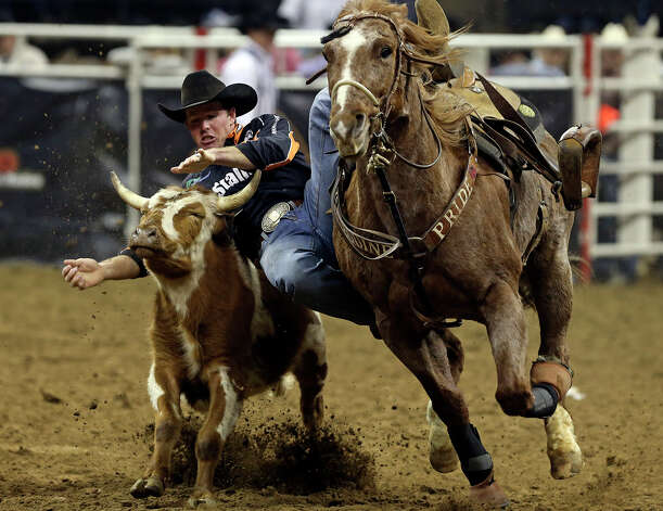 Josh Peek dismounts onto the steer during the steer wrestling competition  at the AT&T Center on Friday, February 22, 2013. Photo: TOM REEL