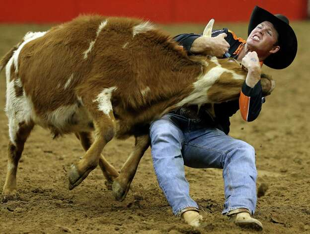 .Josh Peek takes down a steer in the steer wrestling competition during rodeo action at the AT&T Center on Friday, February 22, 2013. Photo: TOM REEL