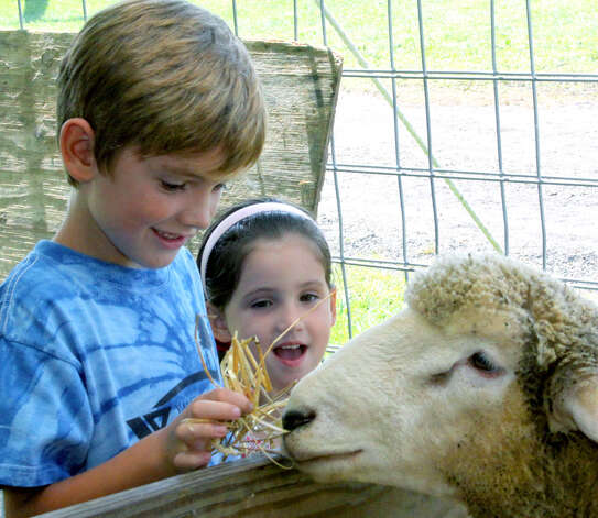 Kevin Dykes, 7, and his sister, Emily, 4, make a new friend in the sheep tent during the Bridgewater Country Fair, Aug. 17-19, 2012 Photo: Walter Kidd