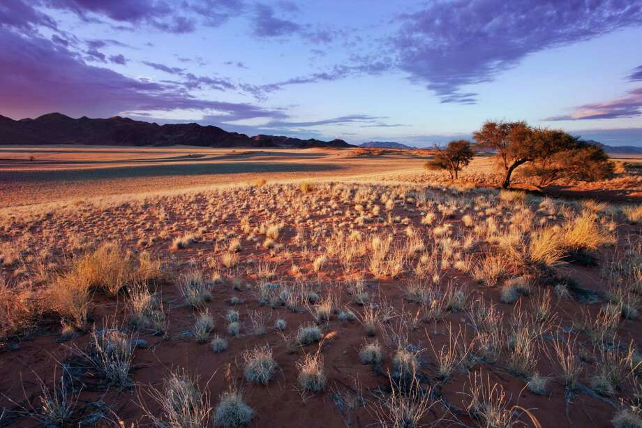 NamibRand Nature Reserve, NamibiaVisitors here can peep at wildlife during the day, then sleep under a blanket of stars at night.  Photo: Martin Harvey, Getty Images / (c) Martin Harvey