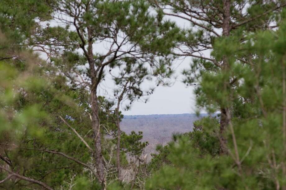 The other side of the Trinity River valley is seen through an opening in the trees at Davis Hill Natural Area Wednesday, Feb. 20, 2013, near Tarkington, Texas. The tract of land was purchased by Texas Parks and Wildlife in 1983, but has never been developed to be used by the public. Photo: Brett Coomer, Houston Chronicle / © 2013 Houston Chronicle