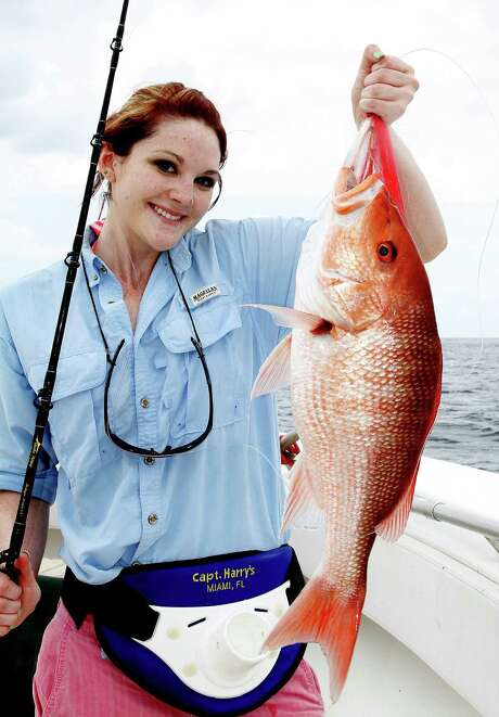The 2013 recreational red snapper season in federally controlled waters of the Gulf of Mexico off Texas could be cut to 11 days or less under a recommended rule, punishing states that don't comply with federal season structures for the popular offshore species. Photo: Picasa