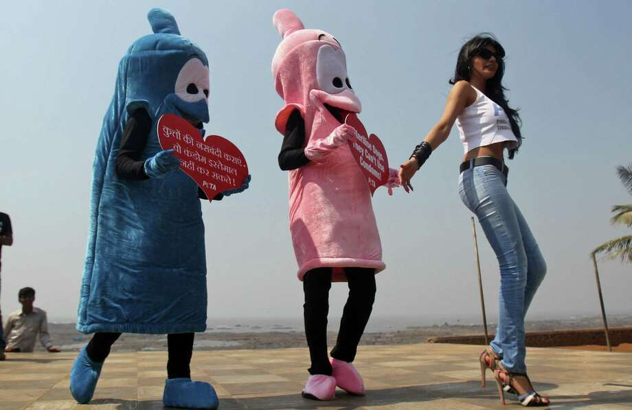 "Bollywood actress Sherlyn Chopra, right, poses with activists of People for the Ethical Treatment of Animals (PETA) dressed as a giant condoms holding placards that read ""Sterilise Dogs - They Can't Use Condoms!"" as part of an awareness campaign in Mumbai, India, Tuesday. Photo: AP"