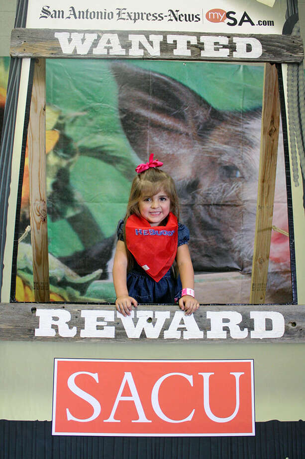 San Antonio Stock Show & Rodeo, Sat. Feb. 23, 2013 Photo: San Antonio Express-News