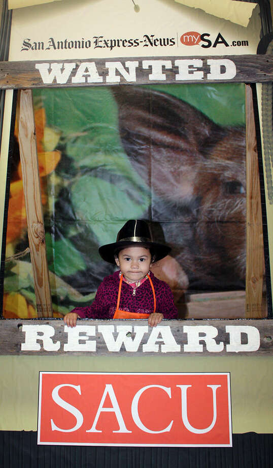 San Antonio Stock Show & Rodeo - Sunday, Feb. 24, 2013 Photo: î…, San Antonio Express-News