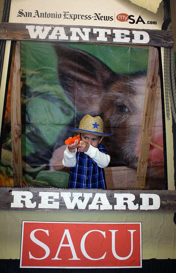 San Antonio Stock Show & Rodeo - Sunday, Feb. 24, 2013 Photo: ê…, San Antonio Express-News