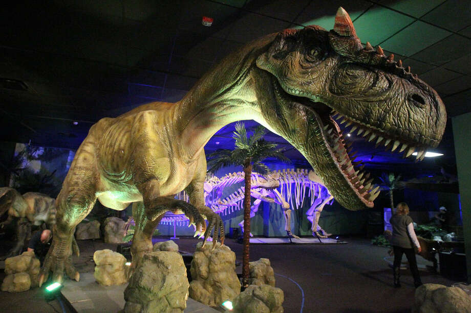 """Dinosaurs Unearthed"" is at the Witte until Sept. 2. Photo: John Davenport / San Antonio Express-News"