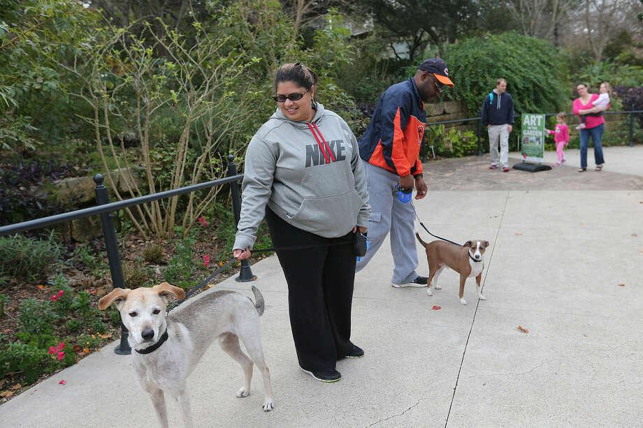 Ada Booker holds Shotsee while her husband, Reginald, holds Bunkee at the Botanical Garden. Photo: Jerry Lara, San Antonio Express-News