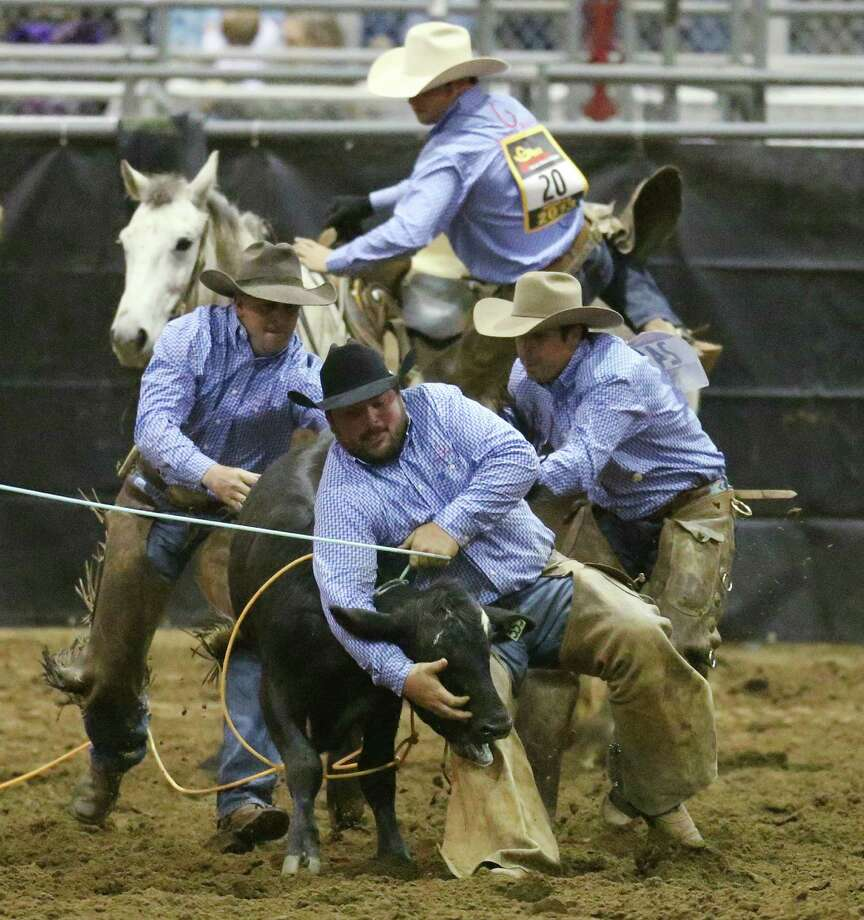 The Briscoe Ranch Team out of Carrizo Springs, holds on during the calf branding competition at the 2013 San Antonio Ranch Rodeo Finals at the San Antonio Stock Show and Rodeo, Sunday, Feb. 24, 2013. The team took home third place. Photo: Jerry Lara, San Antonio Express-News / © 2013 San Antonio Express-News