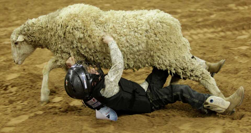 Jake Clark, 5, of Sugarland tries to hang on during his mutton bustin' ride at RodeoHouston during t