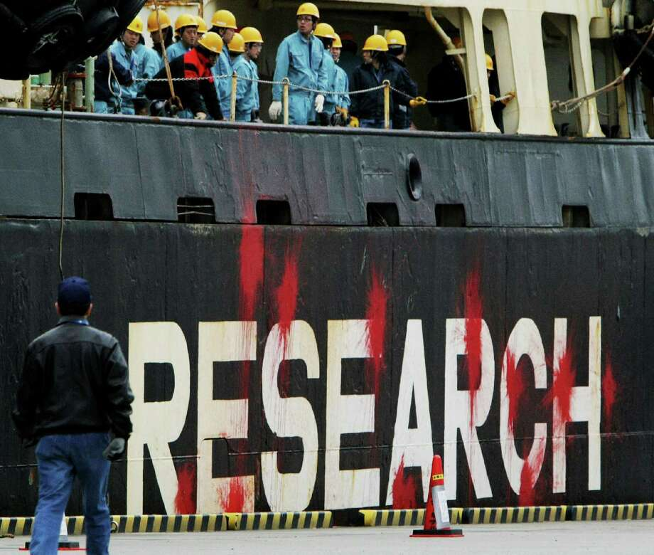 Japanese research whaling ship the Nisshin Maru arrives in the Tokyo port on April 12, 2010, her hull stained by red marks left protests by environmental group Sea Shephered in Antarctic waters. The Japan coast guard plans to examine the vessels and interview crew members about confrontations with the militant Sea Shepherd Conservation Society. AFP PHOTO / JIJI PRESS Photo: JIJI PRESS, Getty Images / 2010 AFP