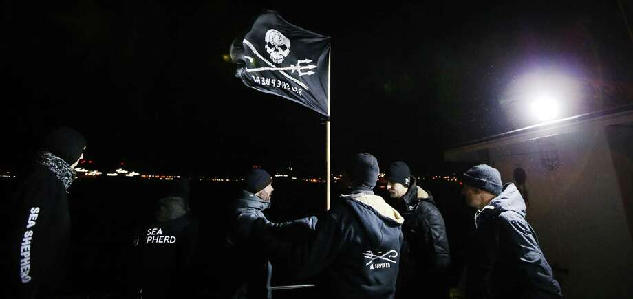 Members of Sea Shepherd organization try to go near the humpback whale called Johannes who aborted in Den Helder, on December 15, 2012. A last-ditch effort to save the humpback whale stuck on a sandbank in the Wadden Sea failed to free the 12-metre long mammal. Photo: AFP, Getty Images / 2012 AFP