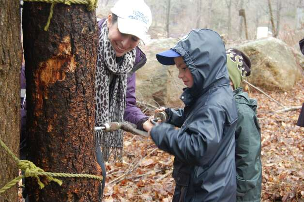 See firsthand how sap is turned into sweet maple syrup at The Stamford Museum & Nature Center's Maple Sugar Festival Weekend on Saturday and Sunday, March 2 and 3. Photo: Contributed Photo