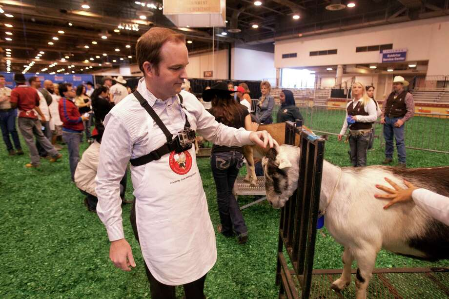 Eric Berger of the Houston Chronicle gets to know his goat during the Celebrity Dairy Goat Milking contest. Photo: Billy Smith II, Houston Chronicle / © 2013  Houston Chronicle