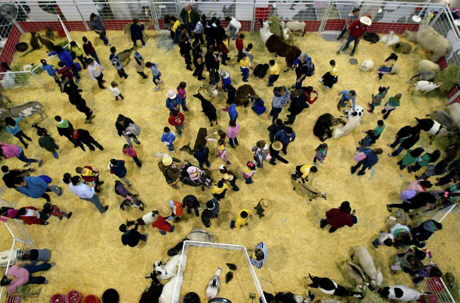 People attend the petting zoo during the Houston Livestock Show and Rodeo at the Reliant Center, Tuesday, Feb. 26, 2013, in Houston. Photo: Cody Duty, Houston Chronicle / © 2013  Houston Chronicle