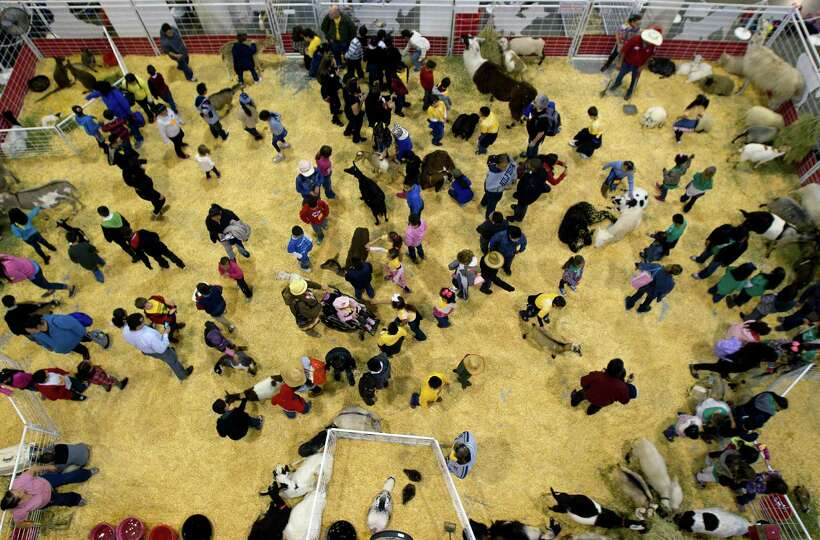 People attend the petting zoo during the Houston Livestock Show and Rodeo at the Reliant Center, Tue