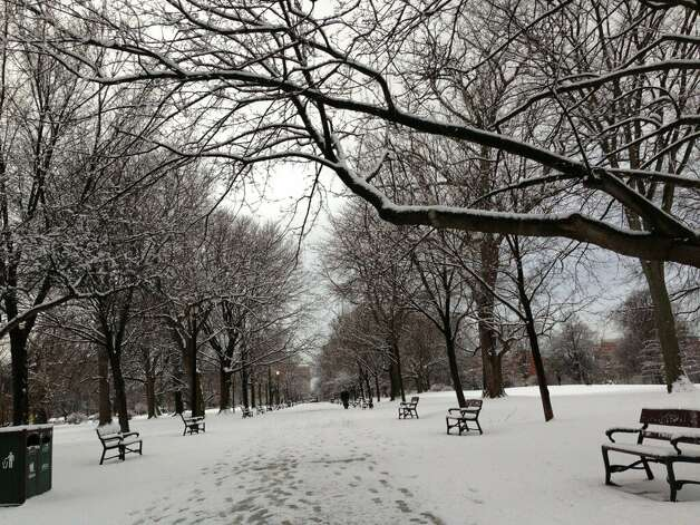 The snowy sidewalks of Washington Park in Albany on Feb. 27, 2013. (Skip Dickstein/Times Union)