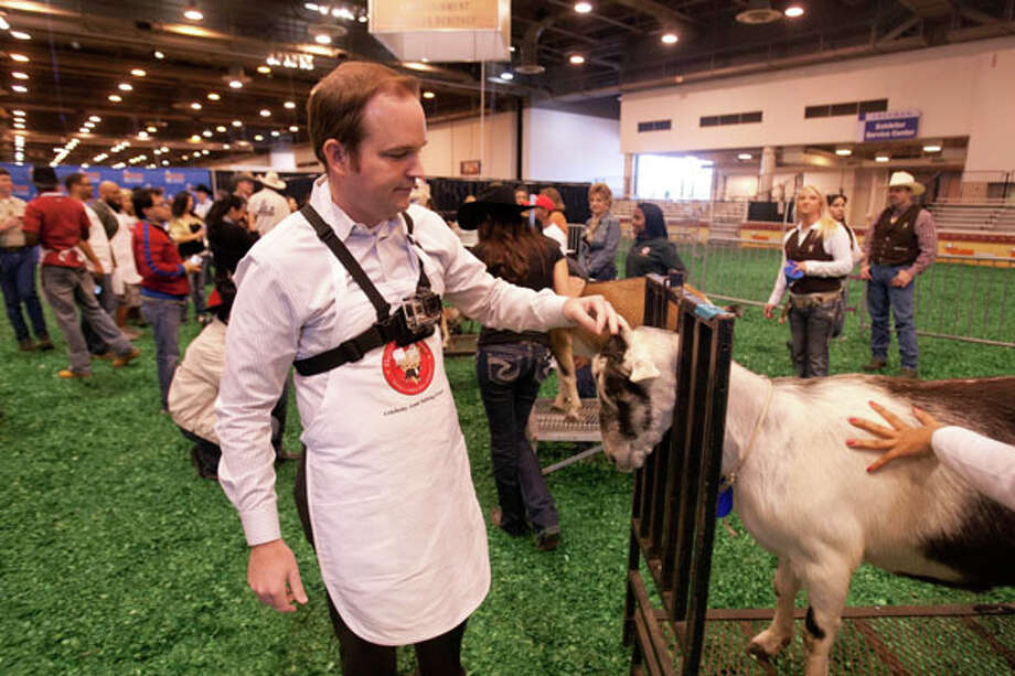 Eric Berger of the Houston Chronicle gets to know his goat. Photo: Billy Smith II, Houston Chronicle / © 2013  Houston Chronicle