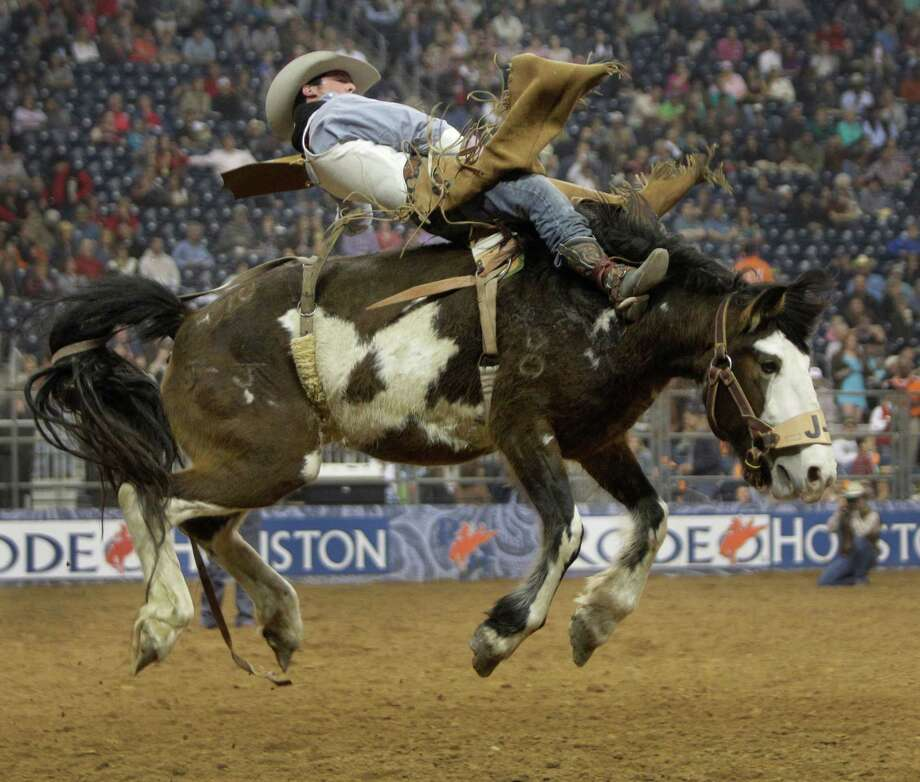 Richmond Champion of The Woodlands rides Painted Jacket during the bareback event in round one of Super Series I at RodeoHouston. Photo: Melissa Phillip, Houston Chronicle / © 2013  Houston Chronicle