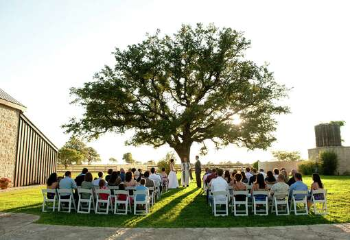 Becker Vineyards offers outdoor ceremonies under a magnificent oak tree.