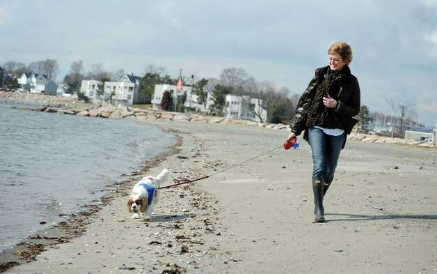 Mary Davis, of Milford, walks her Cavalier King Charles Spaniel, Reese, along Gulf Beach in Milford, Conn. Thursday, Feb. 28, 2013. Photo: Autumn Driscoll / Connecticut Post