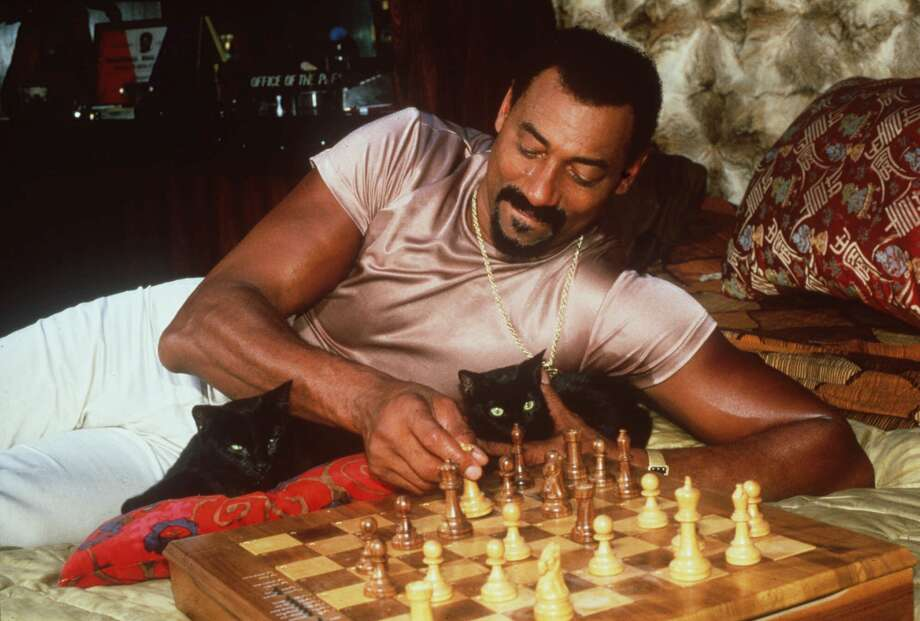 Wilt Chamberlain —Wilt may have scored 100 points in a single game, but was it cooler than starring in Conan the Barbarian? I don't know... (Shoutout to this incredible photo, by the way. It was for a Purina Cat Chow calendar. You read that right.) Photo: Associated Press / HO
