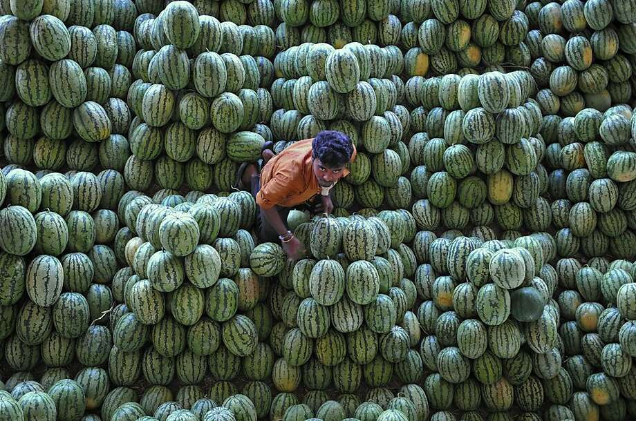 An Indian labourer segregates watermelon at the Gaddiannaram fruit market in Hyderabad on February 28, 2013. India's government on Thursday earmarked $1.9 billion for a populist programme to combat malnutrition, a move seen as a major vote winner for the ruling Congress party in elections next year. Photo: Noah Seelam, AFP/Getty Images