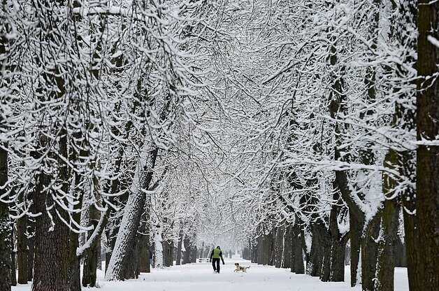 A man plays with his dog on a snow covered path after snow-fall in Burgos, Northern Spain, on February 27, 2013. Photo: Cesar Manso, AFP/Getty Images