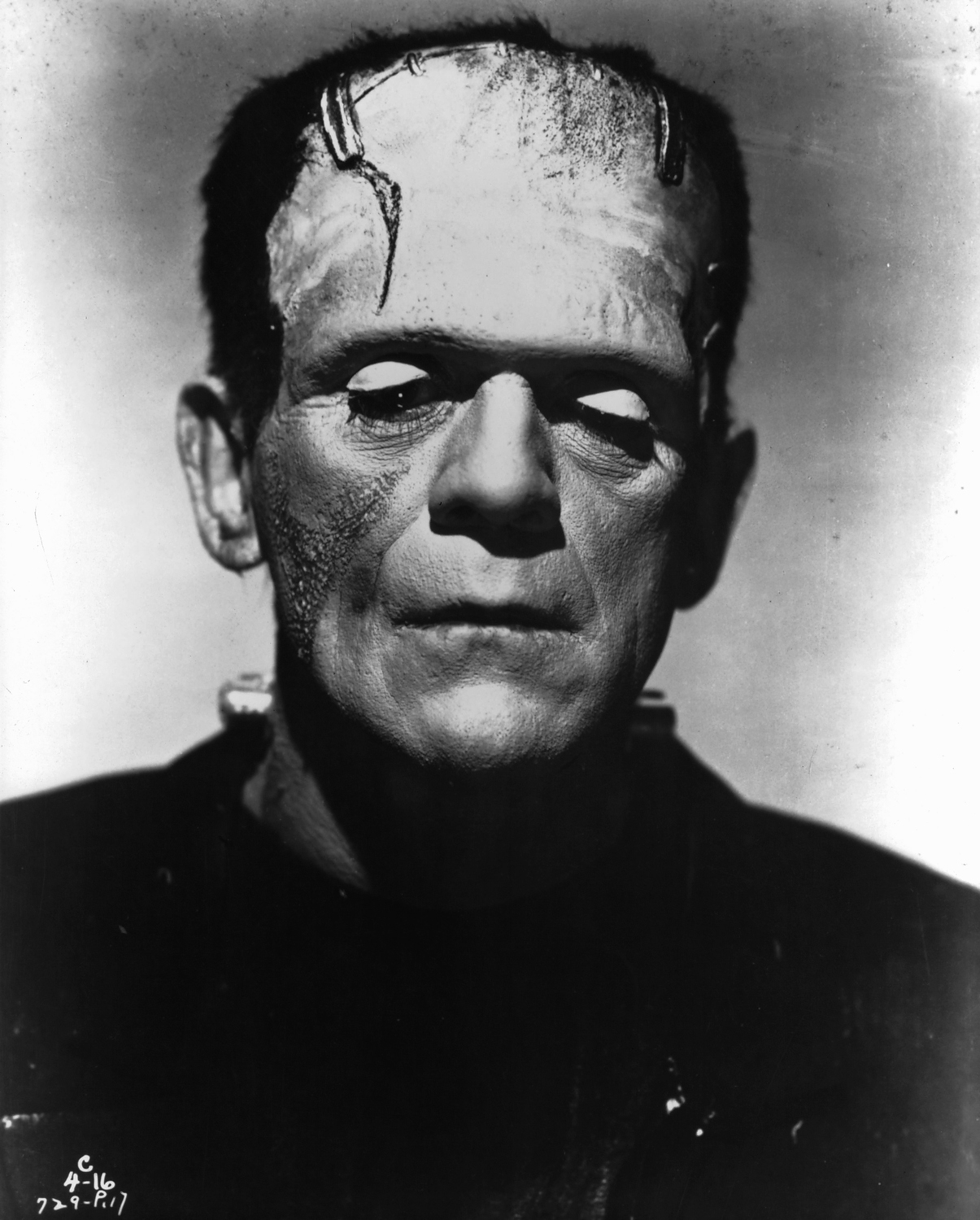 the goals of victor frankenstein achieved by creating the monster in frankenstein by mary shelley Mary shelley's frankenstein  the theme of alienation in the three main characters of victor frankenstein, the monster, and  victor is creating the monster, he.