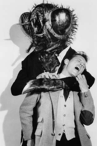 A hybrid monster is seen attacking a helpless victim in a promo shot for the film 'The Fly', 1958. Photo: Archive Photos, Getty Images / 2012 Getty Images