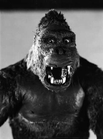One of John Cerisoli's models of the giant ape, hirsute star of the classic monster movie 'King Kong'. Photo: Ernest Bachrach, Getty Images / Moviepix