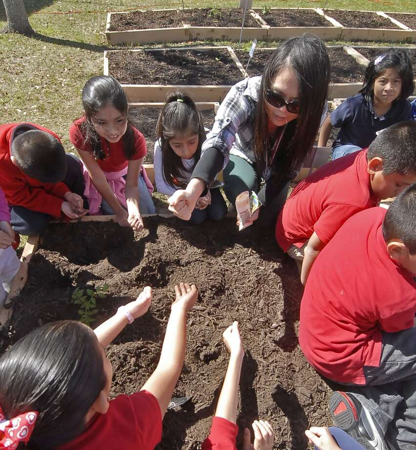 Askew Elementary teacher Shinae Kang hands out vegetable seeds to her second grade students during a Plant Day Celebration at Askew Elementary Thursday 2/17/13. Photo © by Tony Bullard. Photo: © Tony Bullard 2013, Tony Bullard / © Tony Bullard & the Houston Chronicle