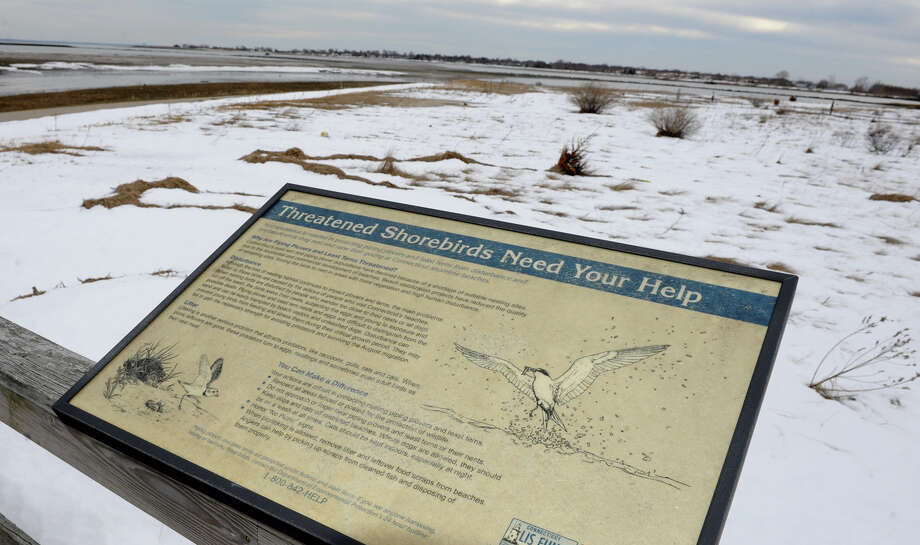 "The Audubon Society will release its Connecticut State of the Birds 2013 report entitled ""The Seventh Habitat and The Decline of Our Aerial Insectivores."" A sign proclaiming ""Threatened Shorebirds Need Your Help"" is seen on the observation platform nearby to the Milford Audubon Society center in Milford, Conn. on Friday February 22, 2013. Photo: Christian Abraham / Connecticut Post"