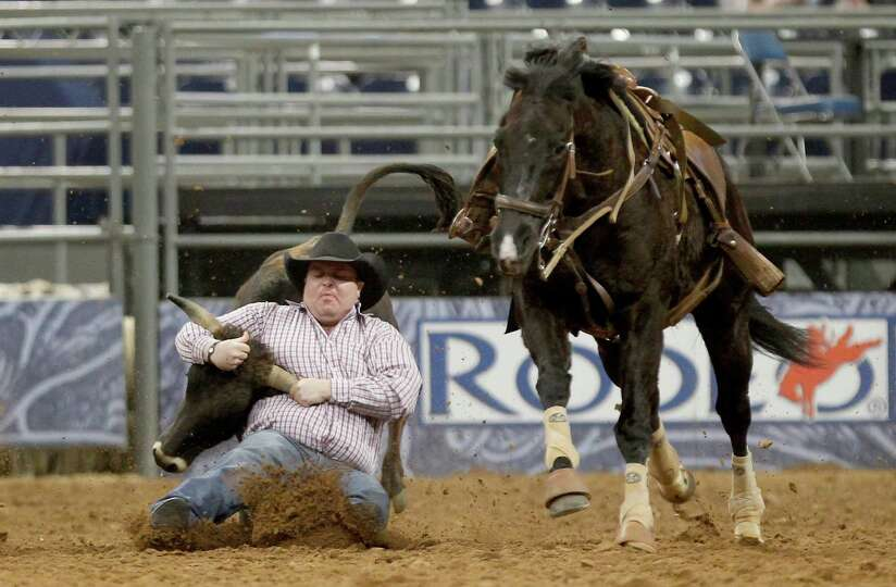 Straws Milan completes his steer wrestling in 4.1 seconds in the Super Series II rodeo competition a