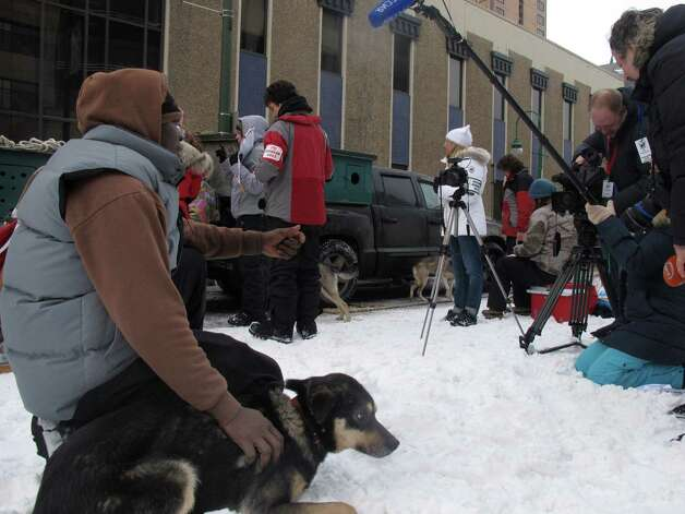 Jamaican musher Newton Marshall is interviewed by international media before the ceremonial start of the 2013 Iditarod Trail Sled Dog Race in Anchorage, Alaska on Saturday, March 2, 2013. The race, which will take mushers about a thousand miles across the Alaska wilderness, starts Sunday, March 3, 2013, in Willow, Alaska. (AP Photo/Mark Thiessen) Photo: Mark Thiessen