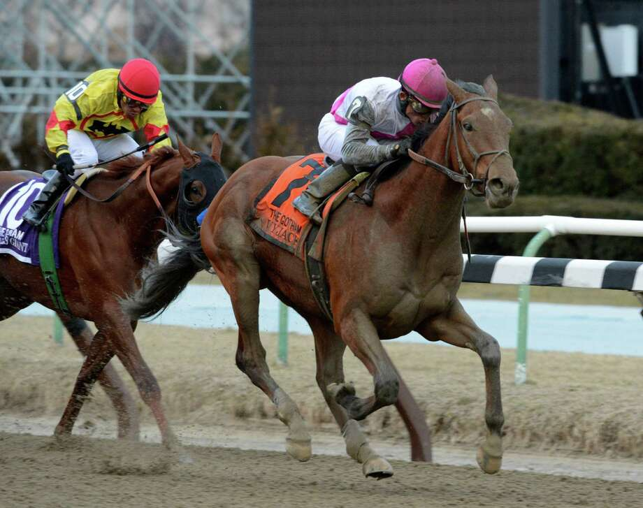 Vyjack ridden by jockey Joel Rosario wins the 61th running of the Gotham Stakes March 2, 2013 at Aqueduct Race Track in Ozone Park, N.Y.    (Skip Dickstein/Times Union) Photo: SKIP DICKSTEIN