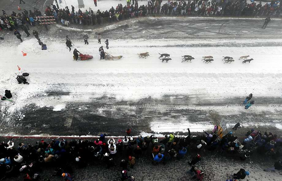 Four-time Iditarod champion Jeff King drives his dog team down 4th Avenue during the ceremonial start of the Iditarod Trail Sled Dog Race on Saturday, March 2, 2013, in Anchorage, Alaska. The competitive portion of the 1,000-mile race is scheduled to begin Sunday in Willow, Alaska. (AP Photo/Anchorage Daily News, Bill Roth) Photo: Bill Roth, Associated Press