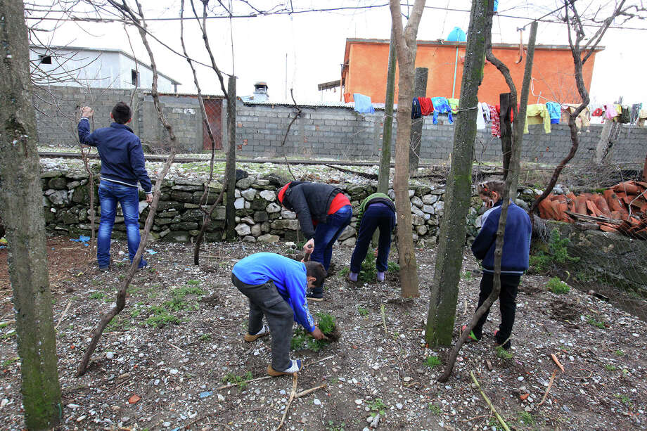 In this Friday, Jan. 18, 2013 photo, children of a family in northwestern Albania pass time working in their small garden, forced to live in isolation after an inter-family murder conflict. The Interior Ministry says 67 families, accounting for 155 people, are currently living in hiding across the country. Charities say the actual number is closer 6,000 people, including hundreds of women and children living in isolation in this country of 3.2 million. Photo: AP