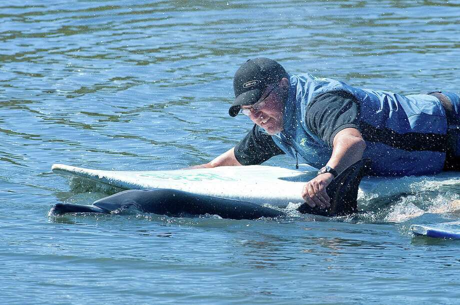 Dean Gomersall, of the Pacific Marine Mammal Center, guides a stranded dolphin out from the Bolsa Chica Wetlands Friday morning, March 1, 2013. A team from the Pacific Marine Mammal Center waded into the water and later got on surfboards to help them swim into deeper and more open water. (AP Photo/The Orange County Register, Sam Gangwer) Photo: AP