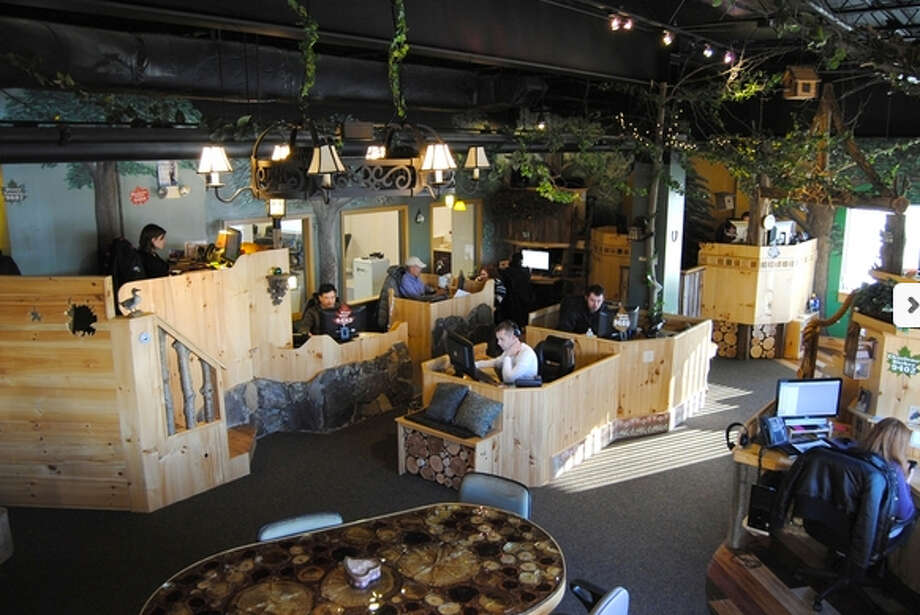 Larry Janesky's Connecticut Basement Systems  Sector:Construction Employees in region: 99 HQ: SeymourThe company's Internet marketing department works in a space designed to look like a treehouse. Photo: Contributed