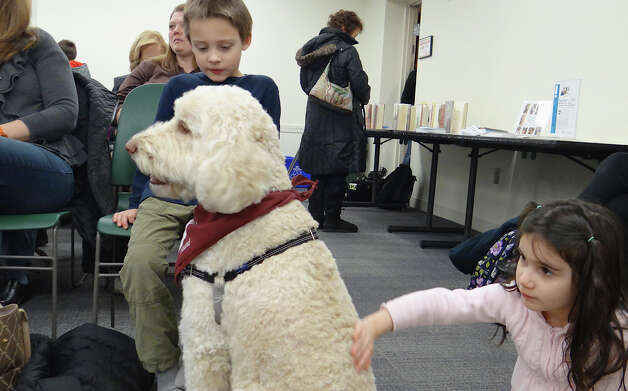 Luca DeMassa, 6, of Fairfield, gets a chance to meet Ollie the therapy dog at a Fairfield Public Library program Saturday.  FAIRFIELD CITIZEN, CT 3/2/13 Photo: Mike Lauterborn / Fairfield Citizen contributed