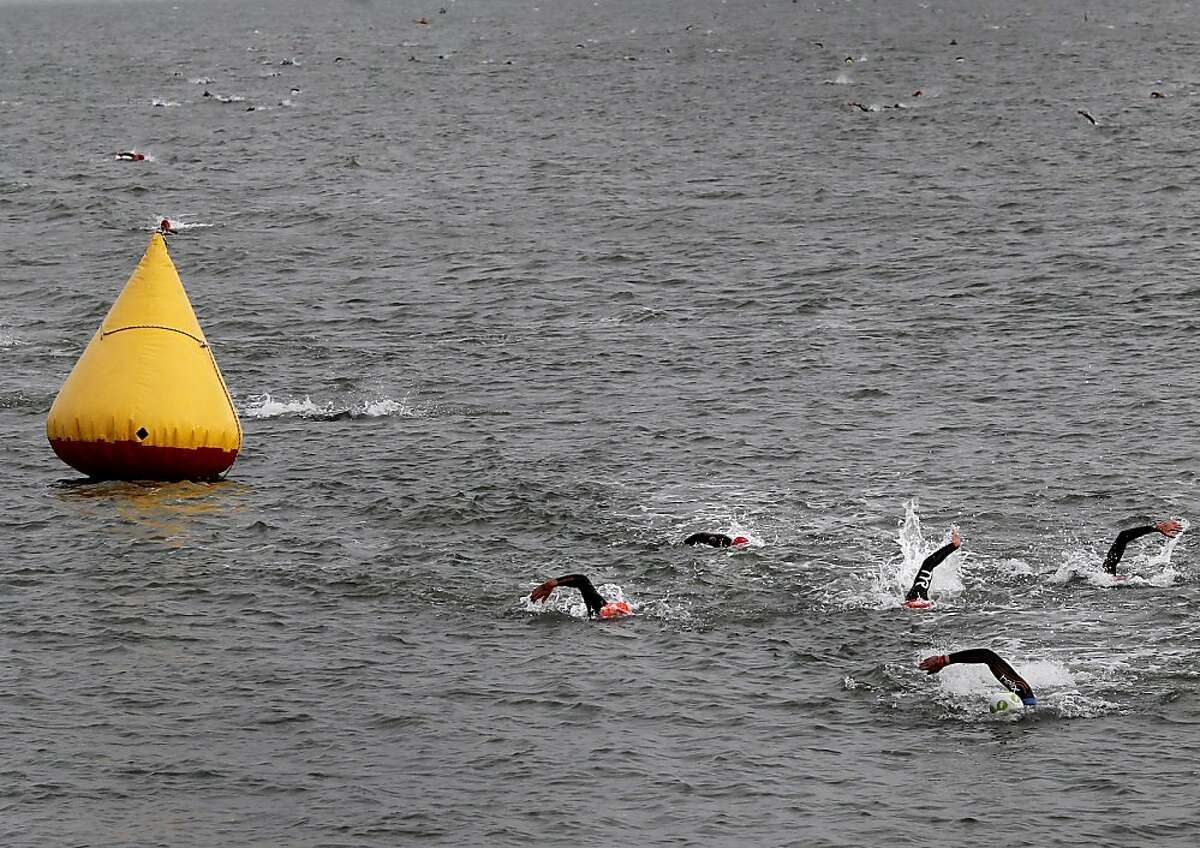 Hundreds of triathletes headed toward shore after a difficult morning swim in the bay. The annual Escape from Alcatraz triathlon was held early Sunday morning March 3, 2013 beginning with a swim in the bay and ending with an eight mile run to the finish line at the Marina Green.