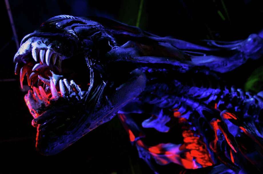 "A model of the creature from the Alien film series is seen during a photocall at the Science Museum on October 13, 2005 in London. The exhibition entitled ""The Science Of Aliens"" is the start of a series of travelling displays by the museum.  (Photo by Bruno Vincent/Getty Images) Photo: Bruno Vincent, Multiple / 2005 Getty Images"