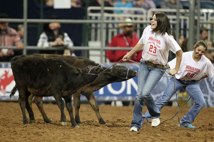 Brooke Bogs and Loran Rhodes pull their calf in attempts to win in the Calf Scramble during Houston