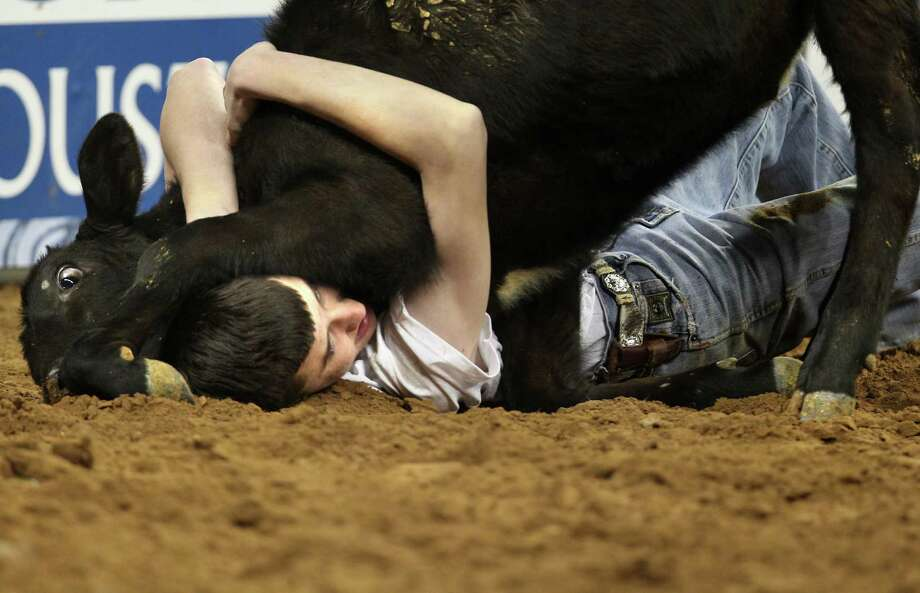 A Calf Scramble participant hangs on to his calf during Houston Livestock Show and Rodeo at Reliant Stadium on Sunday, March 3, 2013, in Houston. Photo: Mayra Beltran, Houston Chronicle / © 2013 Houston Chronicle